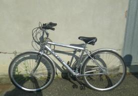 bici correggio 1