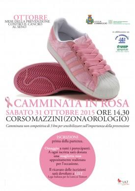 locandina camminata in rosa copia